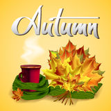 Autumn vector background with leaves and cup of hot coffee or tea. Autumn vector background with autumn leaves and cup of hot coffee or tea in the knitted green Stock Image