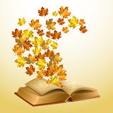 Autumn vector background. Autumn leaves flying from the open old book Royalty Free Stock Photography