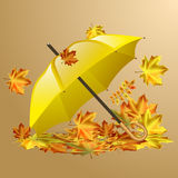 Autumn vector background with  leaves and yellow umbrella. Stock Photography