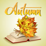 Autumn vector background. Open old book and autumn bouquet of yellow leaves. Hand-written lettering. Typography Stock Photography