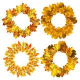 Autumn vector background. Round frame of autumn leaves Royalty Free Stock Image