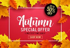 Autumn vector banner template with special offer text, maple leaves vector illustration