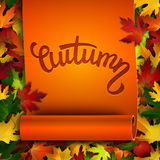 Autumn vector card, hand written text on ribbon, colorful autumn leaves background. Autumn vector card, hand written text on realistic ribbon, colorful autumn royalty free illustration