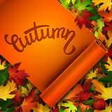 Autumn vector card, hand written text on ribbon, colorful autumn leaves background Stock Photos