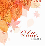 Autumn vector cover. With doodle leaves and transparent leaves for your business Stock Photo