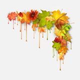 Autumn Vector Dripping Paint Leaves Royalty-vrije Stock Afbeelding