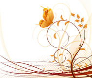 Autumn vector floral background Stock Images