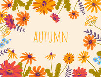 Autumn. Vector floral background with beautiful flowers Royalty Free Stock Photo