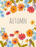 Autumn. Vector floral background with beautiful flowers. Autumn. Hand drawn illustration with gerberas and herbs. Vector floral background with beautiful flowers royalty free illustration