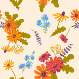 Autumn. vector floral seamless pattern with beautiful flowers Stock Images