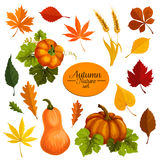 Autumn vector icons of leaf fall and harvest Royalty Free Stock Photography