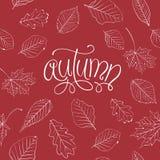 Autumn Vector Illustration Stock Image