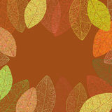 Autumn vector leafs background. Autumn vector transparent leafs background. Leaf contours Royalty Free Stock Photo