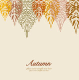 Autumn vector leaves background Royalty Free Stock Images