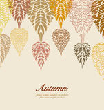 Autumn vector leaves background Royalty Free Stock Photography