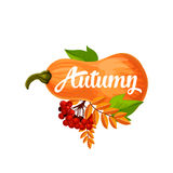 Autumn vector pumpkin poster of leaf fall Royalty Free Stock Image