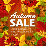 Autumn vector sale poster leaf, rowan berry acorn Royalty Free Stock Images