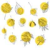 Autumn vector set with leaves handdrawn doodles royalty free illustration