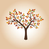 Autumn Vector Tree. Illustration of Nature. Color Autumn Vector Tree. Illustration of Nature Royalty Free Stock Photography