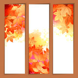 Autumn Vector Watercolor Headers Lizenzfreie Stockbilder