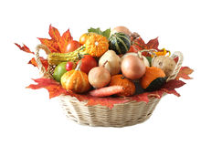 Autumn Vegetable Royalty Free Stock Photography