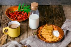 Autumn vegetable fritters with carrots royalty free stock images