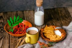 Autumn vegetable fritters with carrots stock photos