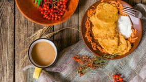 Autumn vegetable fritters with carrots royalty free stock image