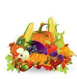 Autumn vegetable and fruits Royalty Free Stock Images
