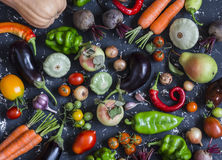 Autumn vegetable harvest. Assortment of vegetables - pumpkin, eggplant, peppers, carrots, tomatoes, onions, garlic, beets on a dar Royalty Free Stock Photo