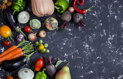 Autumn vegetable harvest. Pumpkin, eggplant, peppers, carrots, tomatoes, onions, garlic, beets on a dark background, top view. Royalty Free Stock Image