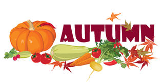Autumn vegetable and leaves background Royalty Free Stock Images