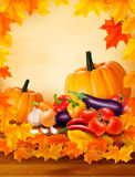 Autumn vegetable on wooden background Stock Photo