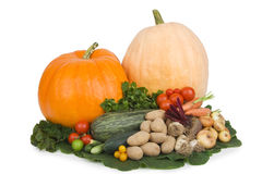 Autumn vegetables. Stock Images