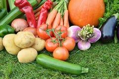 Autumn Vegetables Immagini Stock Libere da Diritti