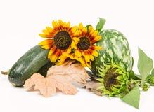 Autumn Vegetables Immagine Stock