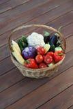 Autumn Vegetables Immagini Stock