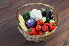 Autumn Vegetables Fotografie Stock