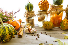 Autumn vegetables on basement shelf Royalty Free Stock Photos