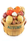 Autumn vegetables in basket. Royalty Free Stock Photography