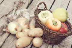 Autumn vegetables Stock Image