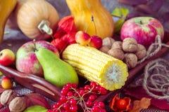 Autumn vegetables, berries and fruits. Seasonal autumn food - pu. Mpkins, corn, apples, pear, viburnum, physalis Stock Photos