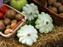 Autumn vegetables composition Royalty Free Stock Photos