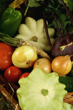 Autumn vegetables composition. Organically grown autumn vegetables composition Royalty Free Stock Photos