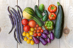 Autumn vegetables. Royalty Free Stock Photo