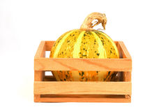 Autumn vegetables - gourds. Autumn vegetables - yellow gourd in the box Stock Image