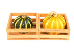 Autumn vegetables - gourds. Autumn vegetables - green and yellow gourds in the boxes Stock Photography