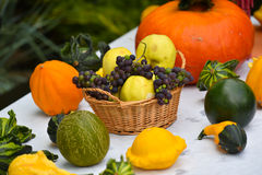 Autumn vegetables. Autumn harvest vegetables in a wicker basket with colorful pumpkins Royalty Free Stock Photography