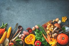 Autumn vegetables ingredients for tasty Thanksgining or Christmas dishes royalty free stock images