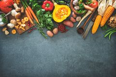 Autumn vegetables ingredients for tasty Thanksgining or Christmas dishes royalty free stock photo